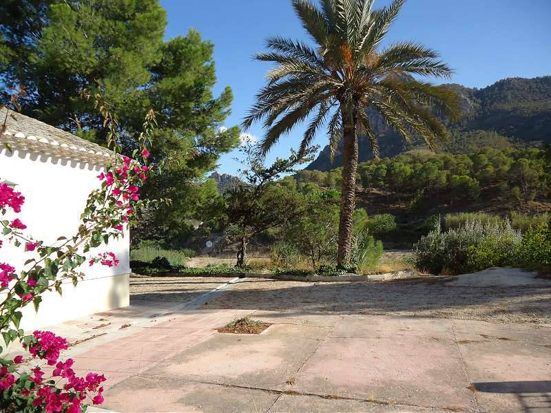Country House - For Sale - Cieza - Set on own mountain with gardens, established frui