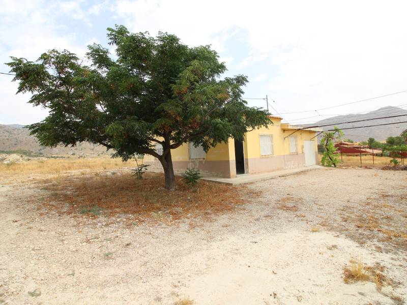 Country House - For Sale - Ojos - Ojos