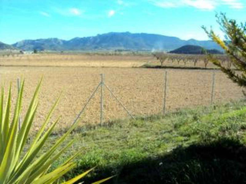 Land / Building Plot - For Sale - Ricote - Ricote